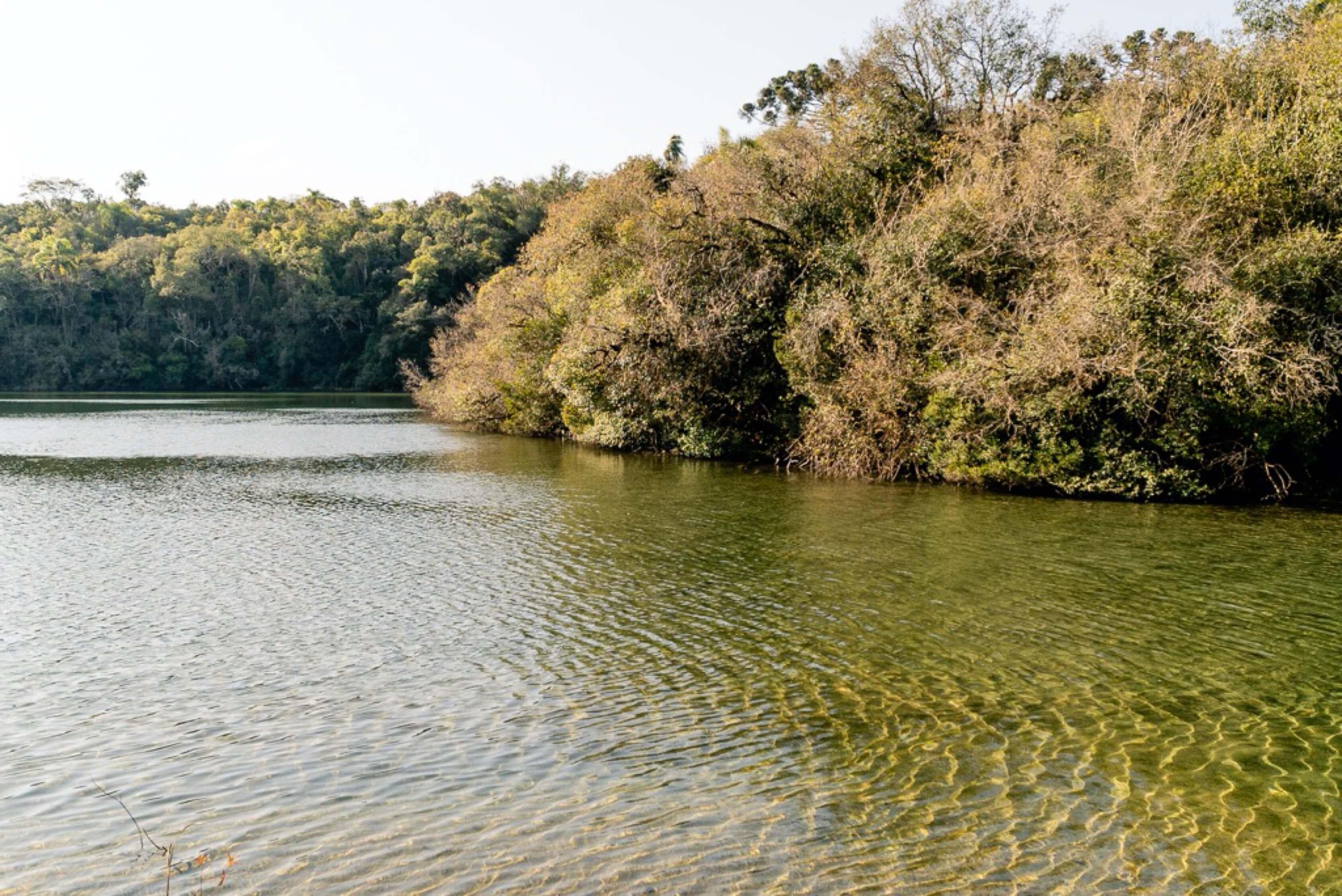 Lagoa agua transparente perto de Curitiba