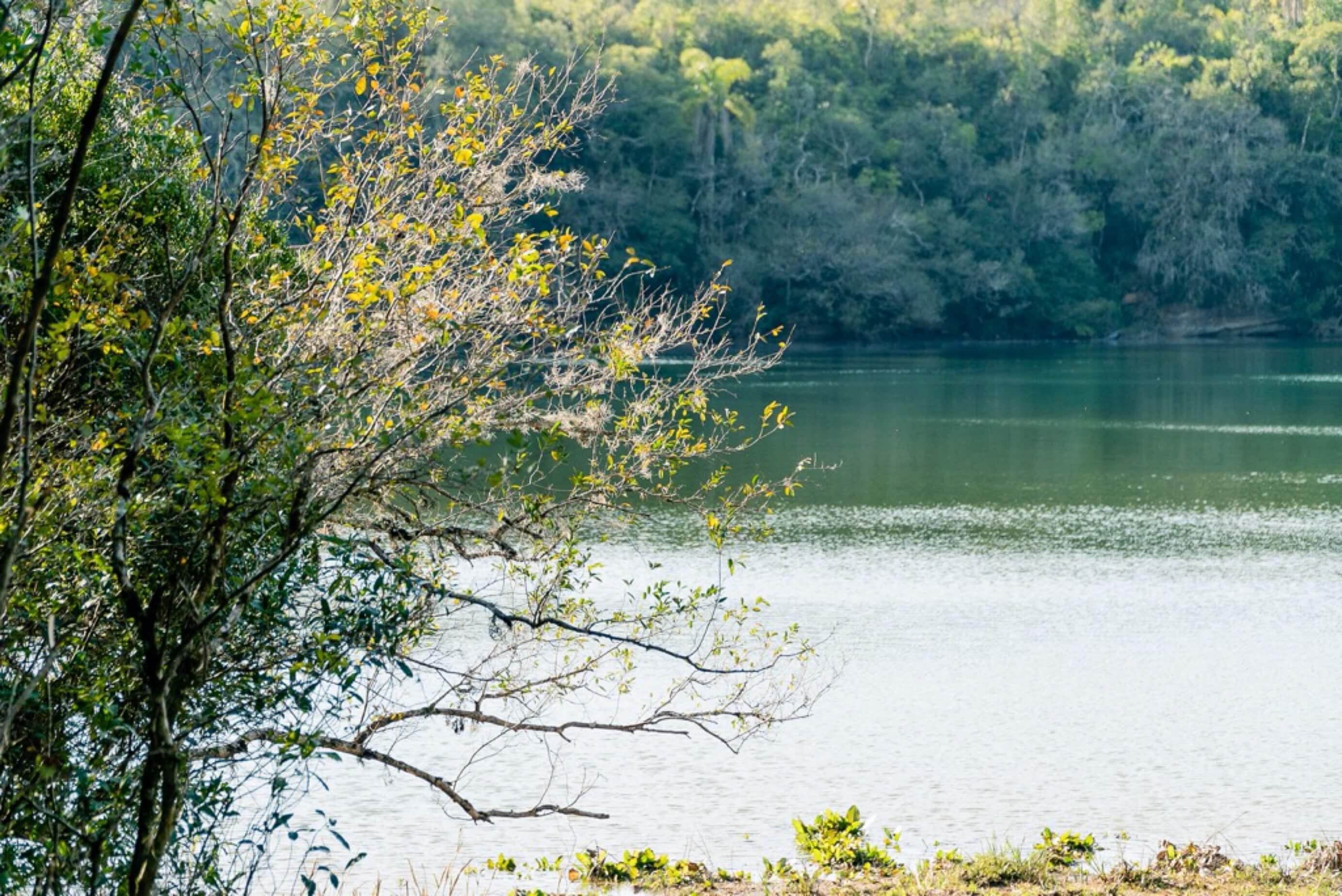 Lagoa Dourada no Parque Vila Velha