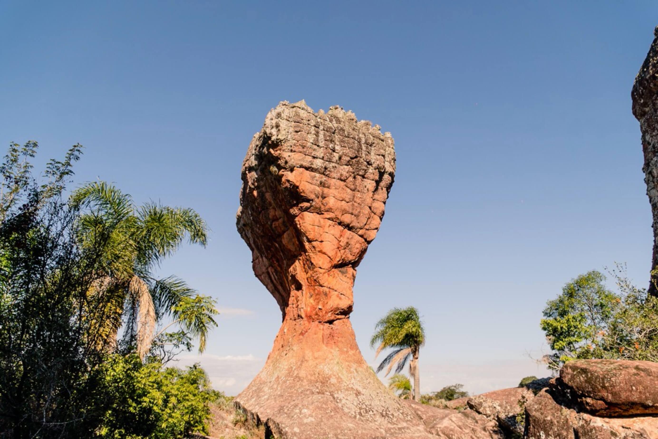 A Taça do Parque Vila Velha